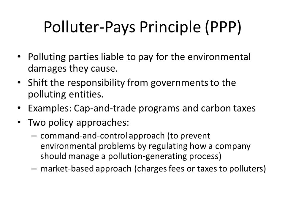 Polluter-Pays Principle (PPP)