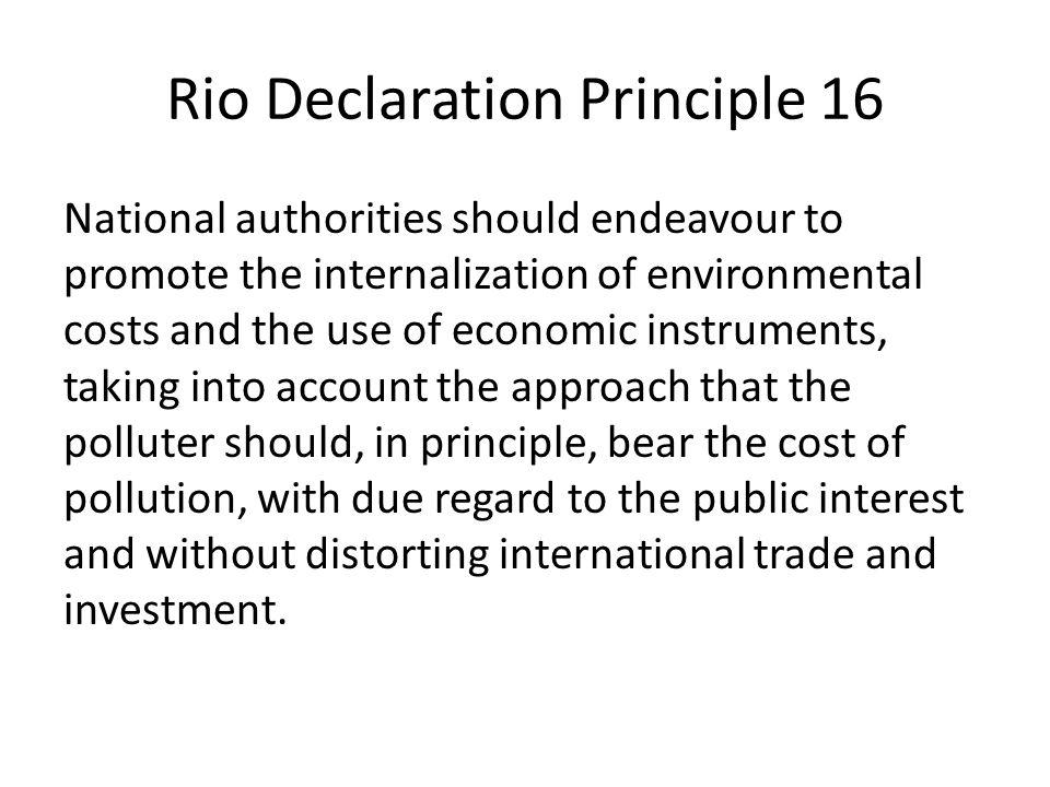 Rio Declaration Principle 16