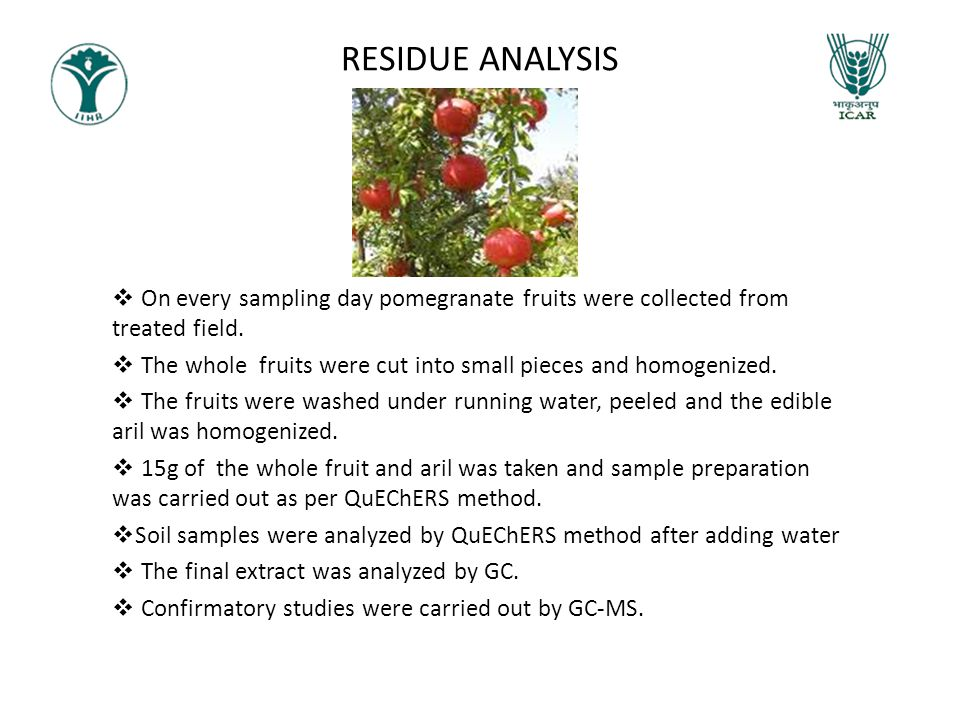 RESIDUE ANALYSIS On every sampling day pomegranate fruits were collected from treated field.