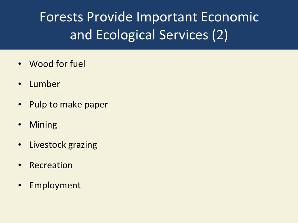Forests Provide Important Economic and Ecological Services (2)