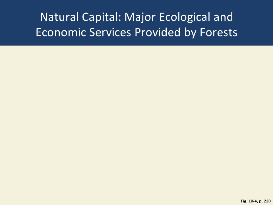 Natural Capital: Major Ecological and Economic Services Provided by Forests