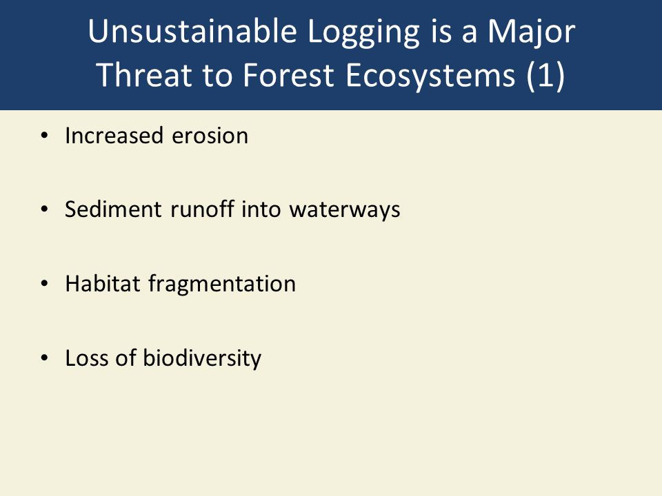 Unsustainable Logging is a Major Threat to Forest Ecosystems (1)