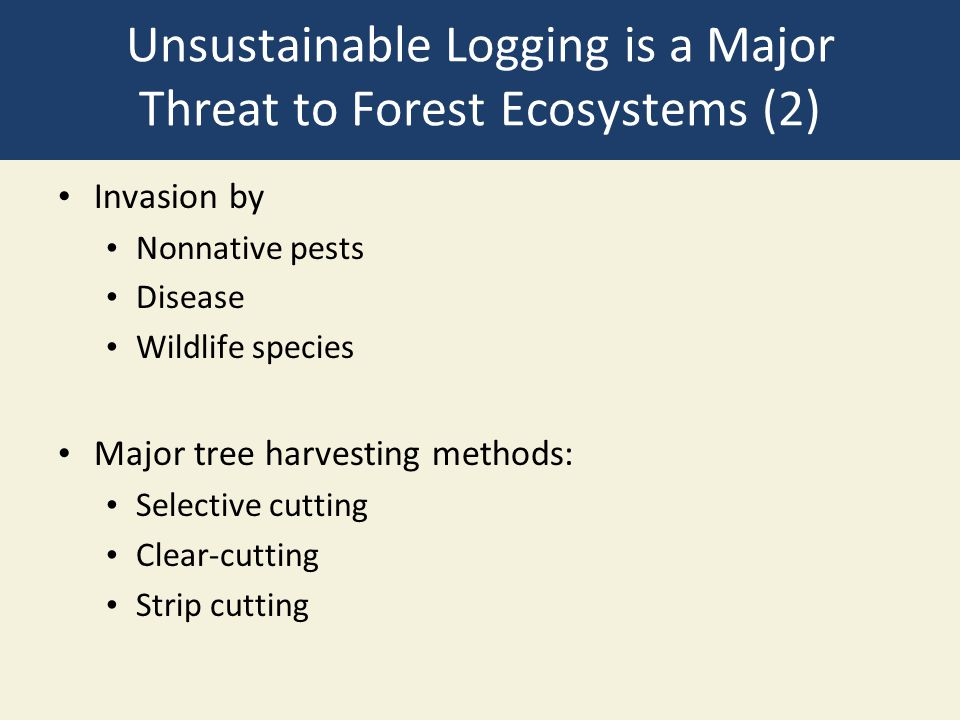 Unsustainable Logging is a Major Threat to Forest Ecosystems (2)