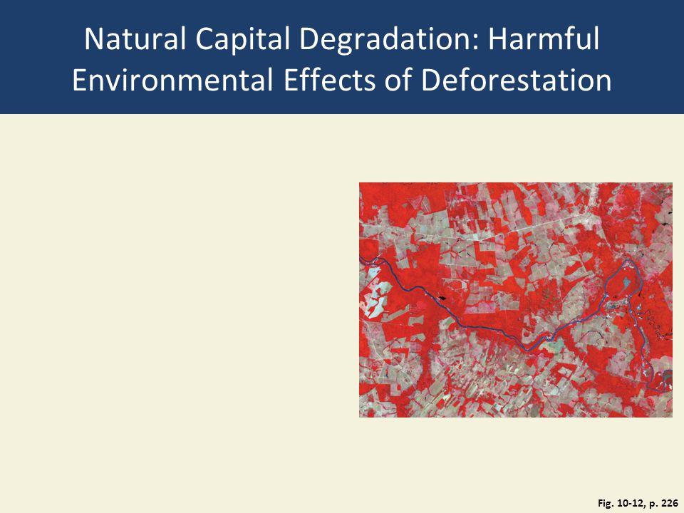 Natural Capital Degradation: Harmful Environmental Effects of Deforestation