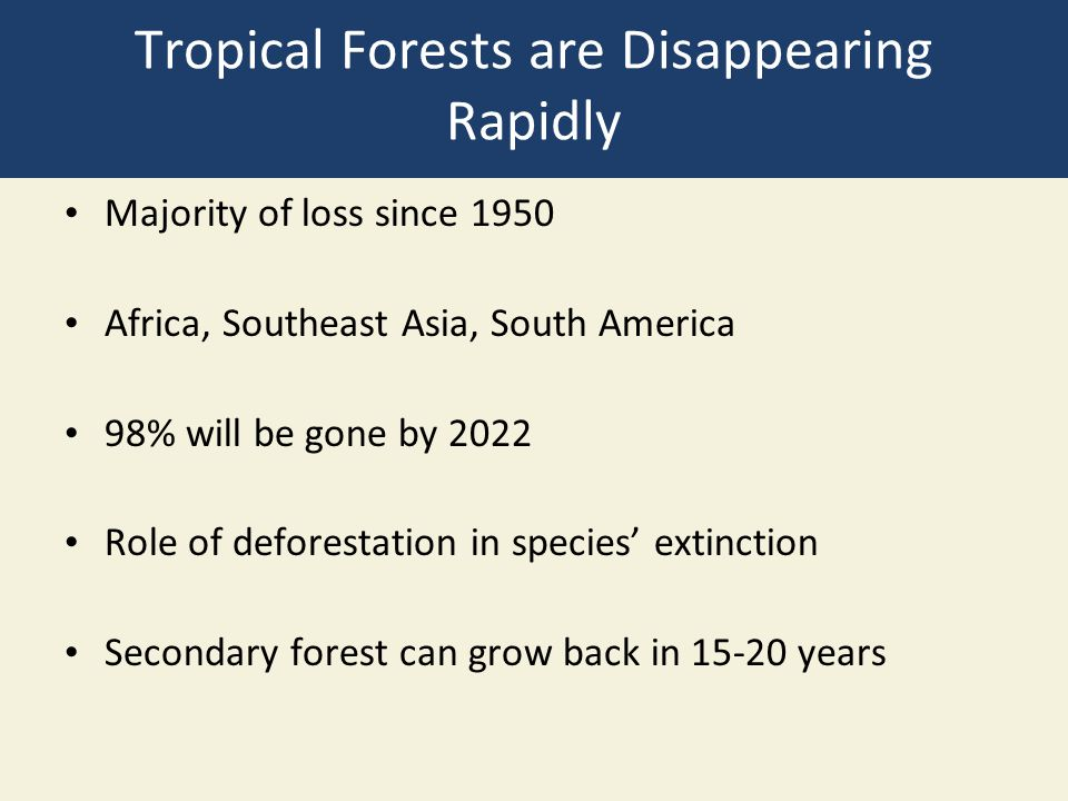 Tropical Forests are Disappearing Rapidly