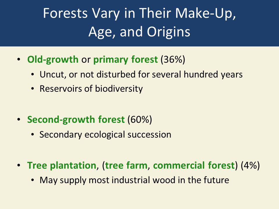 Forests Vary in Their Make-Up, Age, and Origins