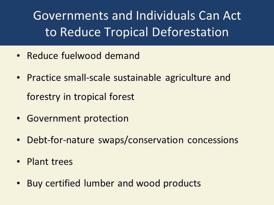 Governments and Individuals Can Act to Reduce Tropical Deforestation