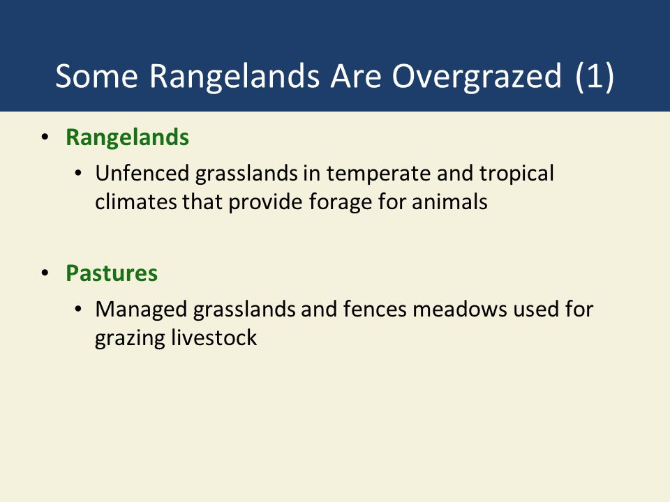 Some Rangelands Are Overgrazed (1)