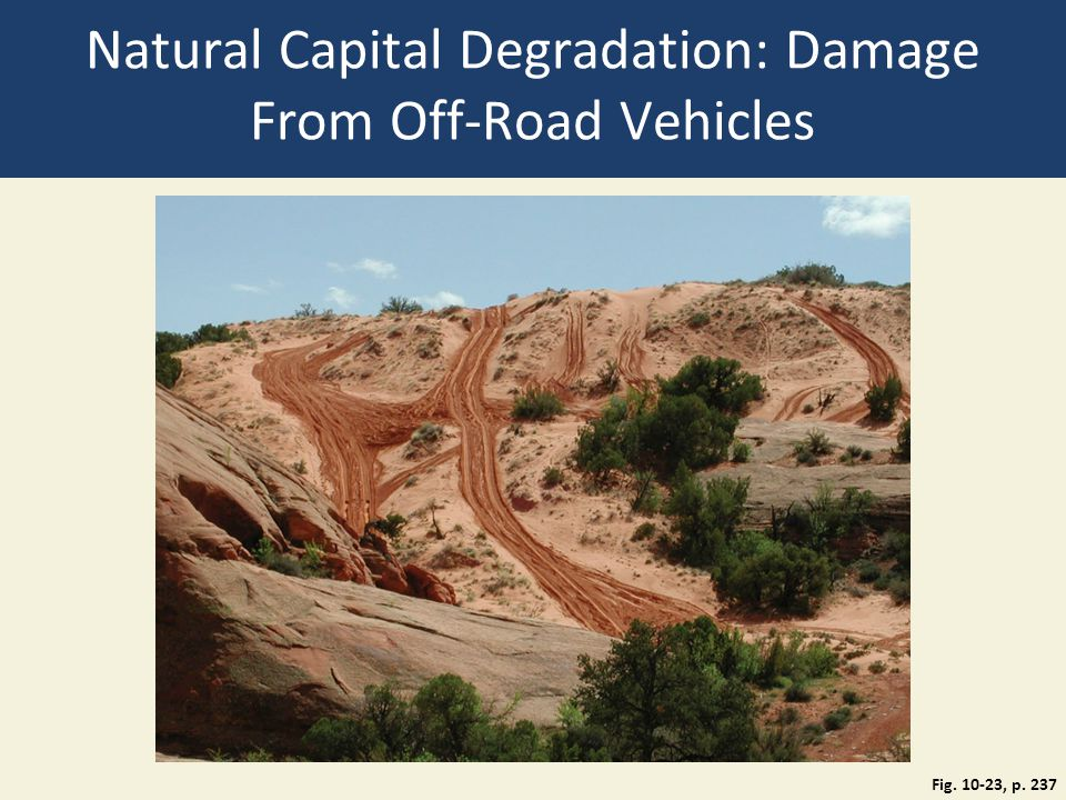 Natural Capital Degradation: Damage From Off-Road Vehicles