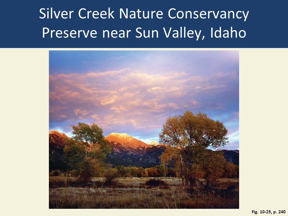 Silver Creek Nature Conservancy Preserve near Sun Valley, Idaho