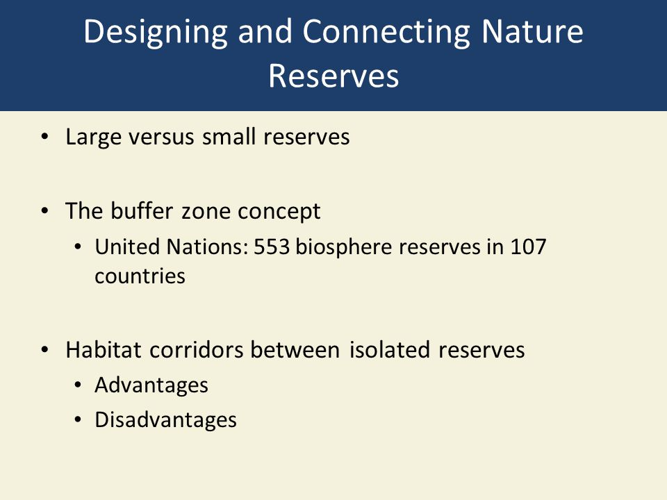 Designing and Connecting Nature Reserves
