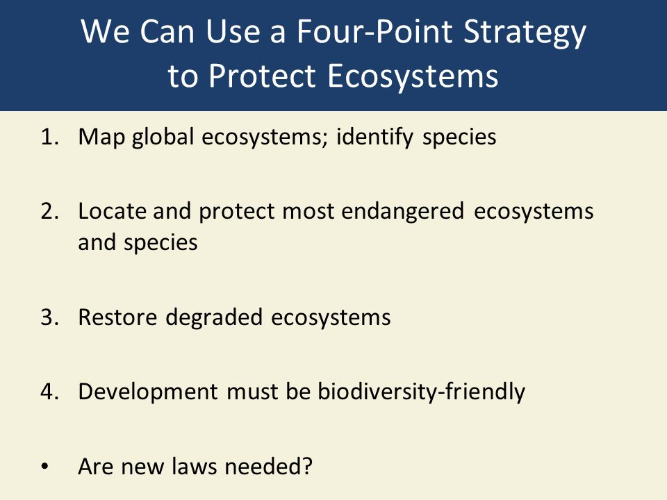 We Can Use a Four-Point Strategy to Protect Ecosystems