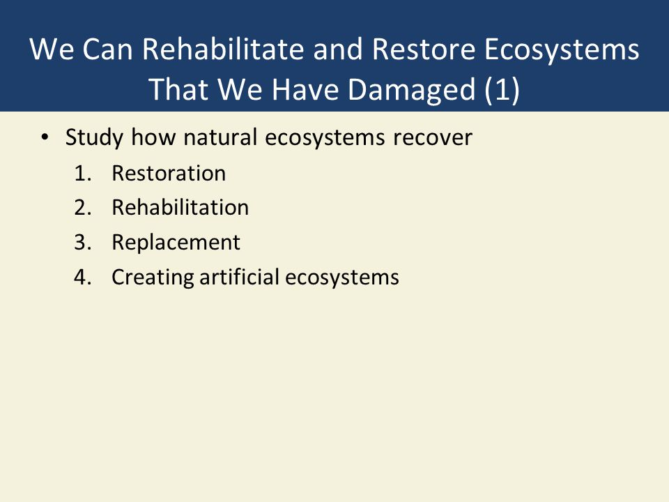We Can Rehabilitate and Restore Ecosystems That We Have Damaged (1)
