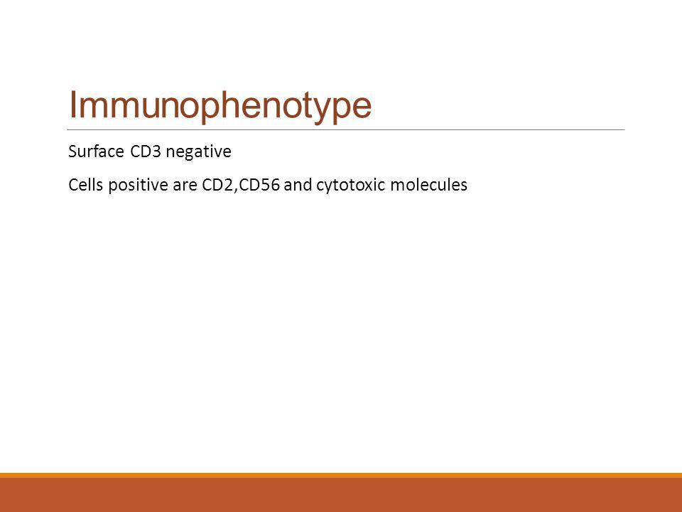Immunophenotype Surface CD3 negative