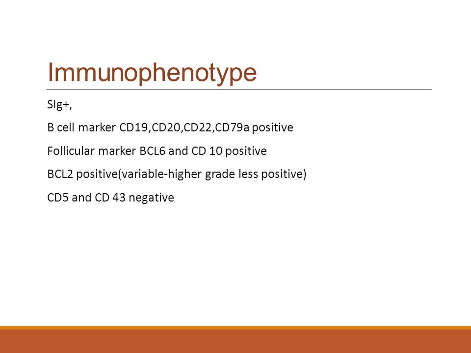 Immunophenotype SIg+, B cell marker CD19,CD20,CD22,CD79a positive