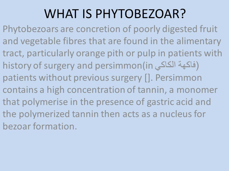 WHAT IS PHYTOBEZOAR