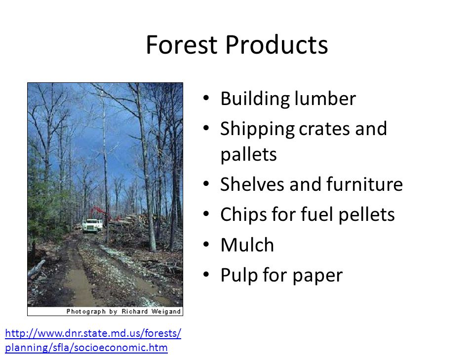 Forest Products Building lumber Shipping crates and pallets