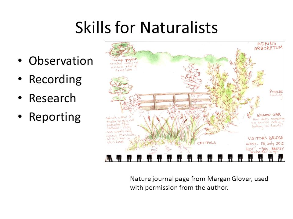 Skills for Naturalists