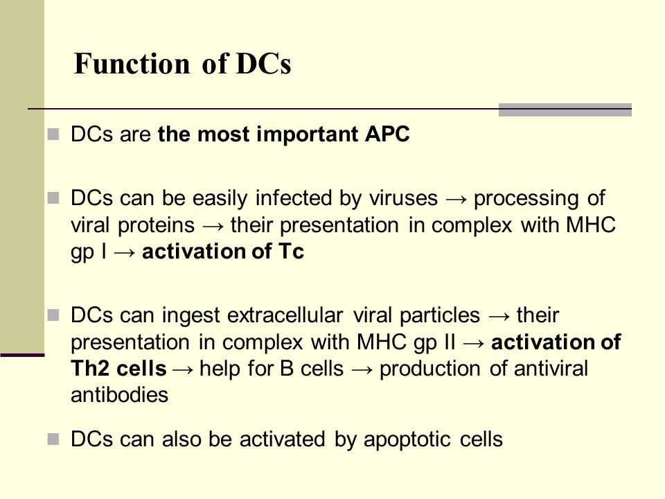 Function of DCs DCs are the most important APC