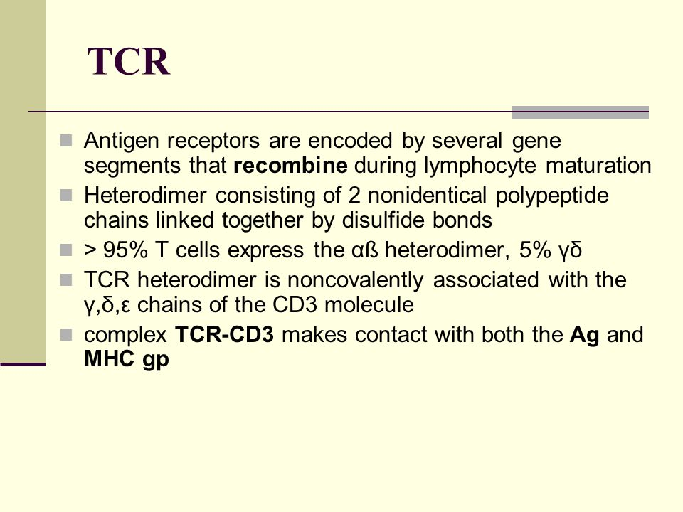 TCR Antigen receptors are encoded by several gene segments that recombine during lymphocyte maturation.