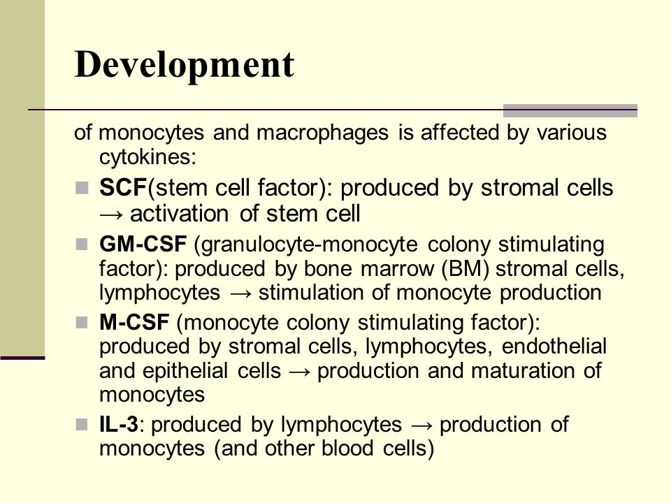 Development of monocytes and macrophages is affected by various cytokines: