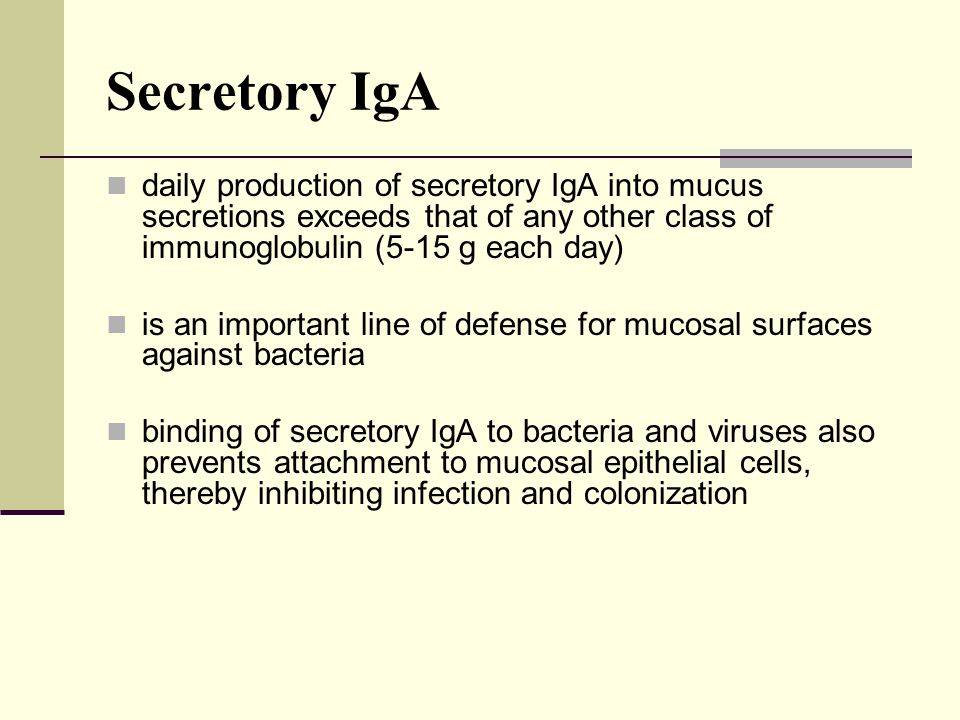 Secretory IgA daily production of secretory IgA into mucus secretions exceeds that of any other class of immunoglobulin (5-15 g each day)