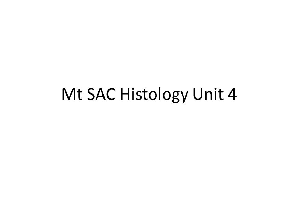 Mt SAC Histology Unit 4