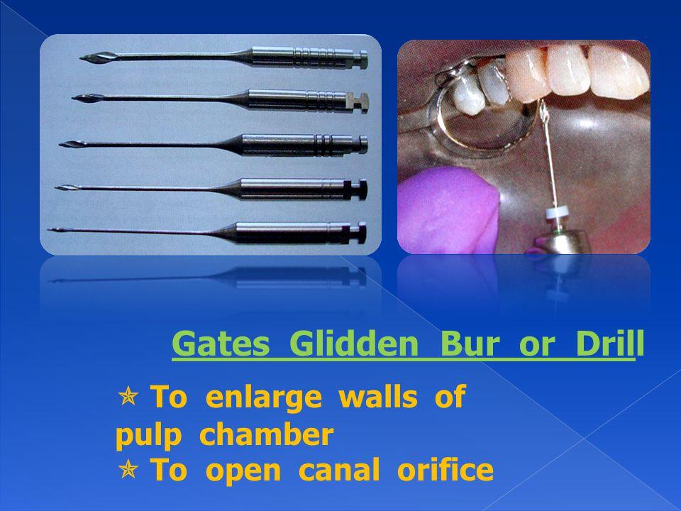 Gates Glidden Bur or Drill