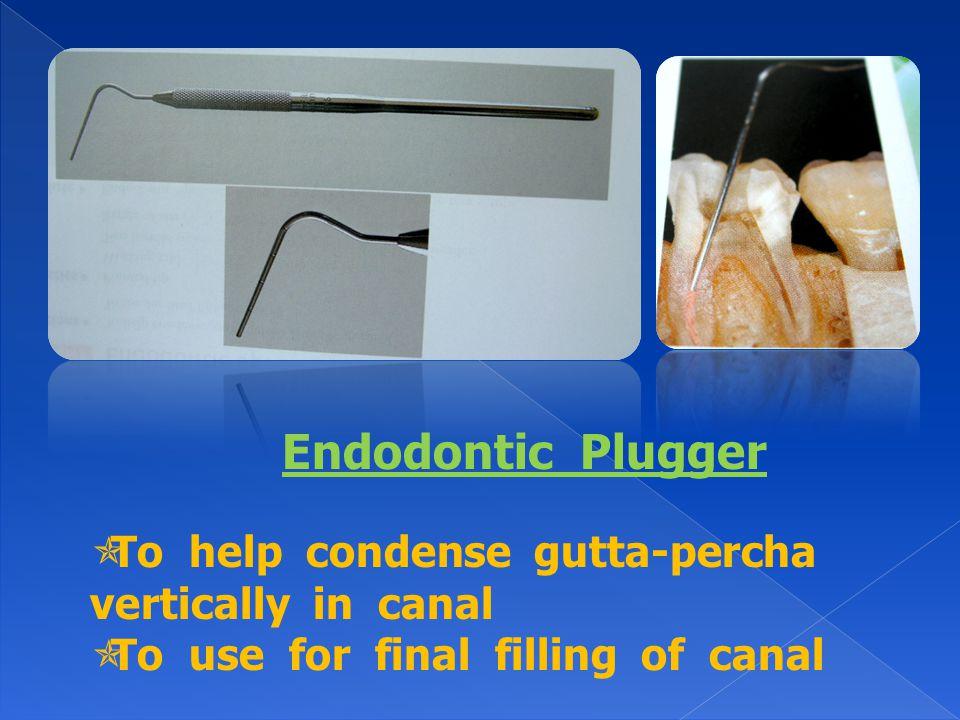 Endodontic Plugger To help condense gutta-percha vertically in canal