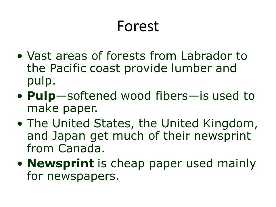 Forest Vast areas of forests from Labrador to the Pacific coast provide lumber and pulp. Pulp—softened wood fibers—is used to make paper.