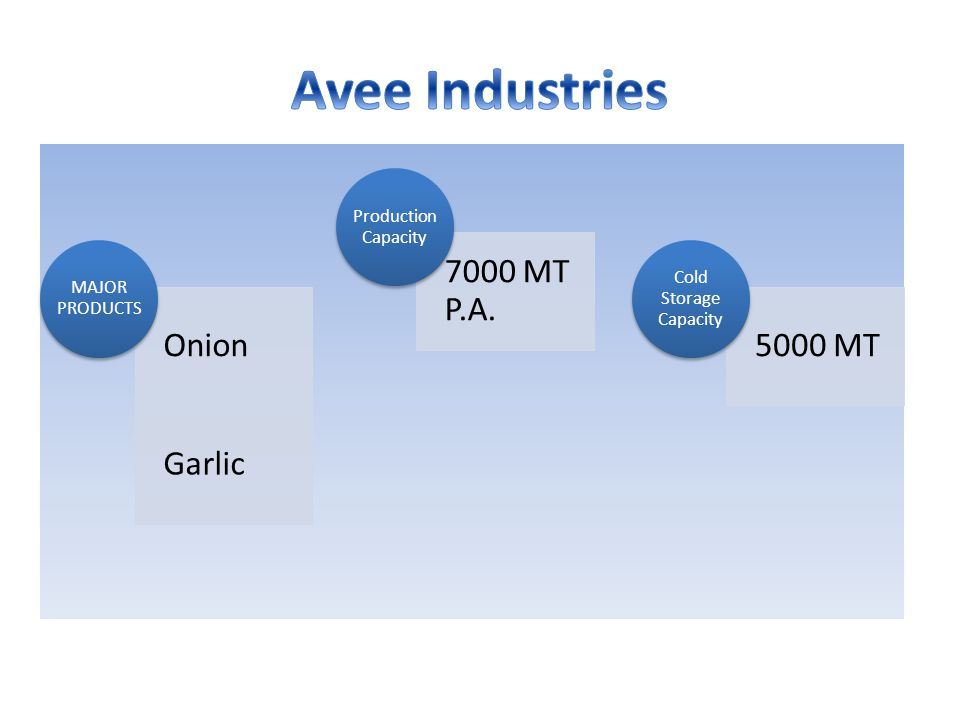 Avee Industries Onion Garlic 7000 MT P.A. 5000 MT Production Capacity