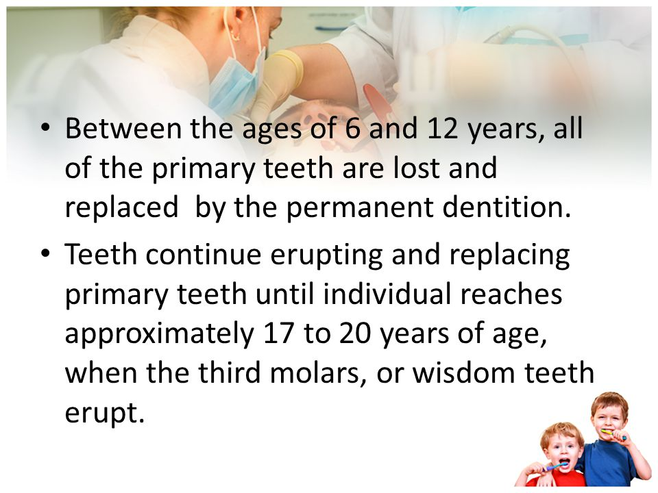 Between the ages of 6 and 12 years, all of the primary teeth are lost and replaced by the permanent dentition.