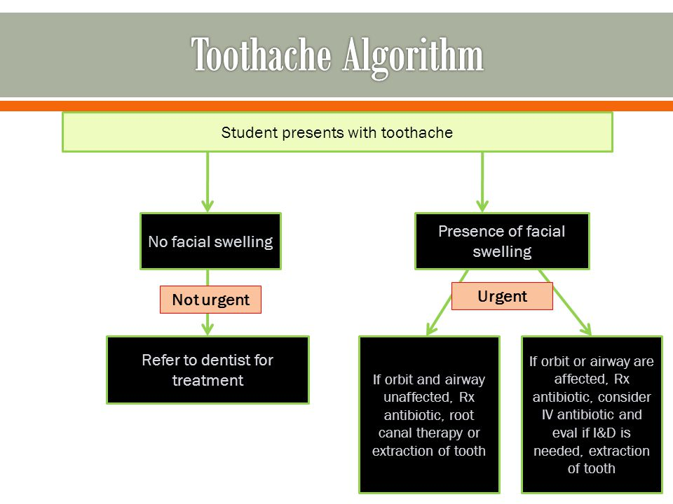 Toothache Algorithm Student presents with toothache