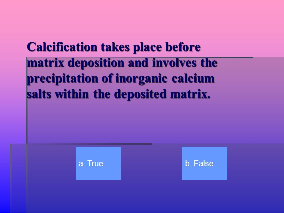 Calcification takes place before matrix deposition and involves the precipitation of inorganic calcium salts within the deposited matrix.