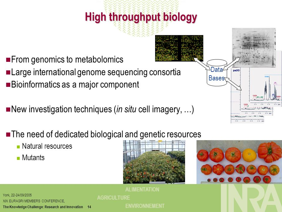 High throughput biology