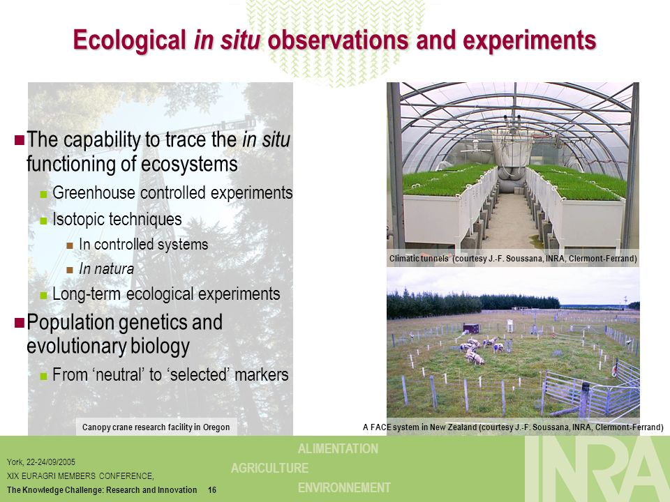 Ecological in situ observations and experiments