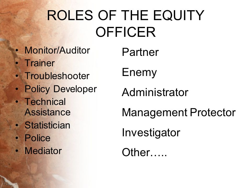 ROLES OF THE EQUITY OFFICER