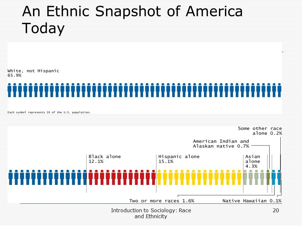 An Ethnic Snapshot of America Today