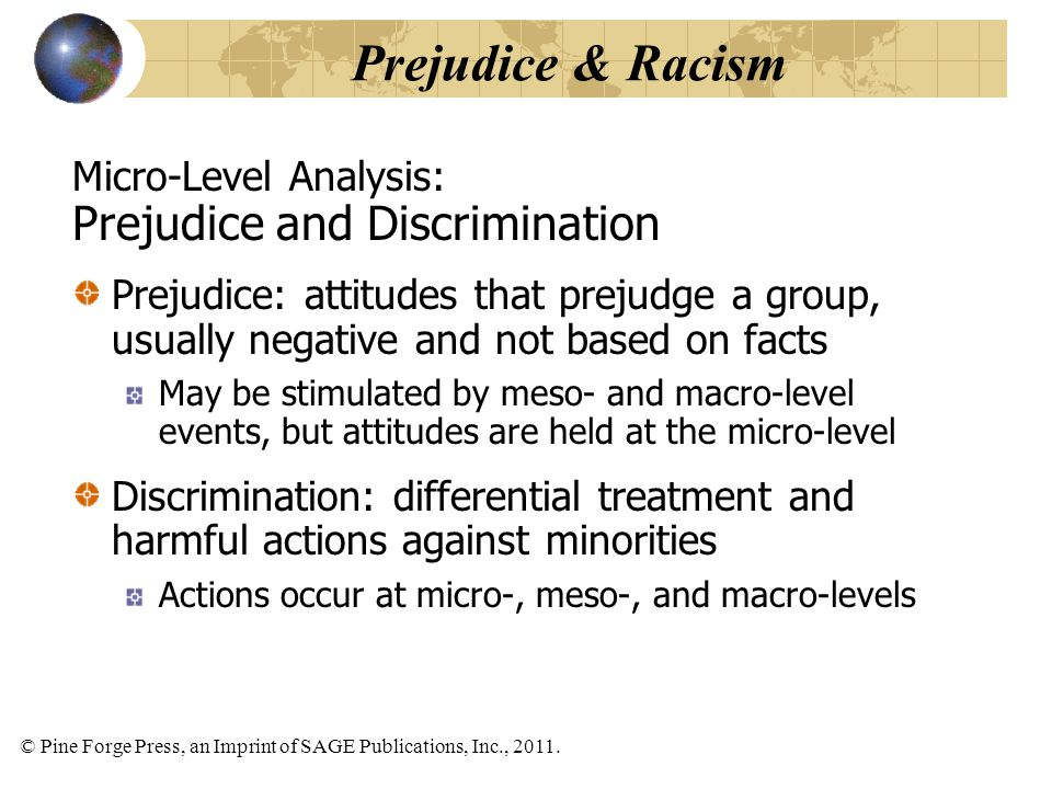 Prejudice & Racism Prejudice and Discrimination Micro-Level Analysis: