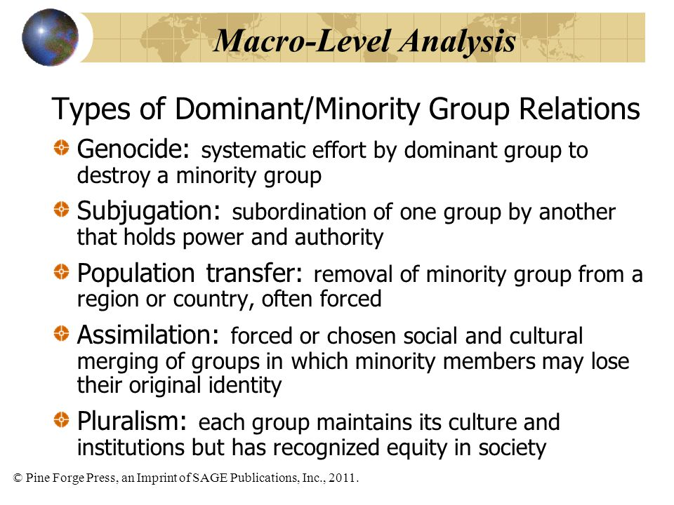 Macro-Level Analysis Types of Dominant/Minority Group Relations