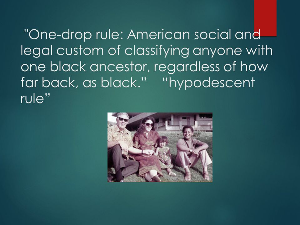 One-drop rule: American social and legal custom of classifying anyone with one black ancestor, regardless of how far back, as black. hypodescent rule