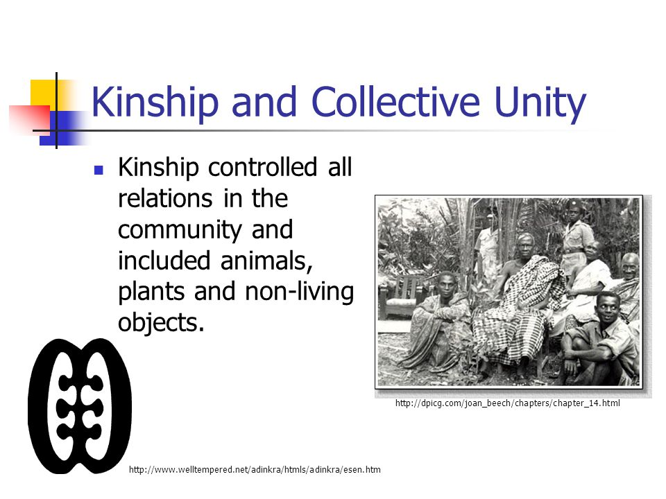 Kinship and Collective Unity