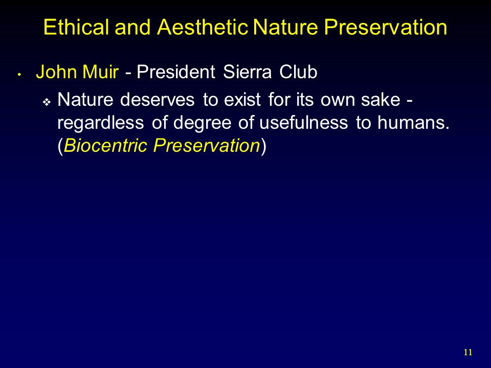 Ethical and Aesthetic Nature Preservation
