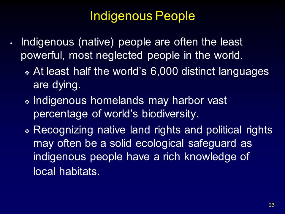 Indigenous People Indigenous (native) people are often the least powerful, most neglected people in the world.