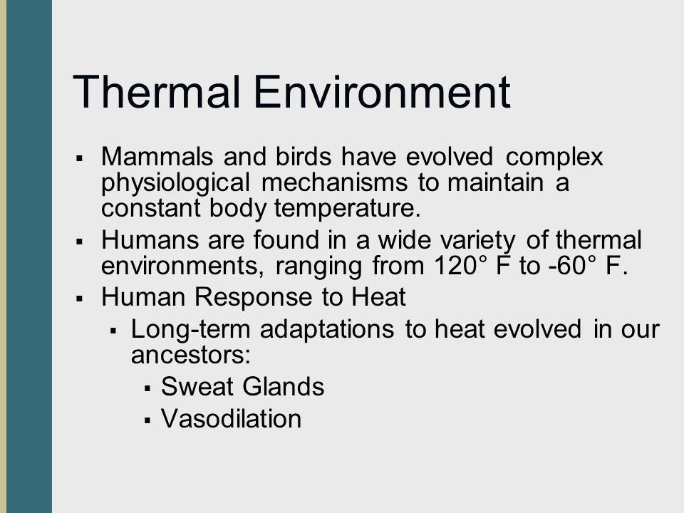Thermal Environment Mammals and birds have evolved complex physiological mechanisms to maintain a constant body temperature.