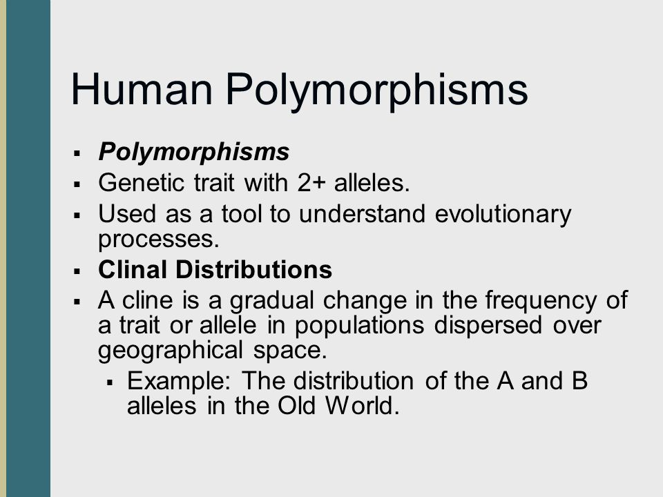 Human Polymorphisms Polymorphisms Genetic trait with 2+ alleles.
