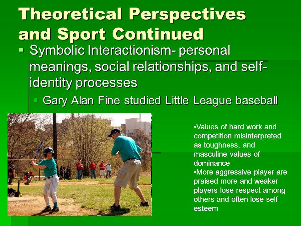 Theoretical Perspectives and Sport Continued