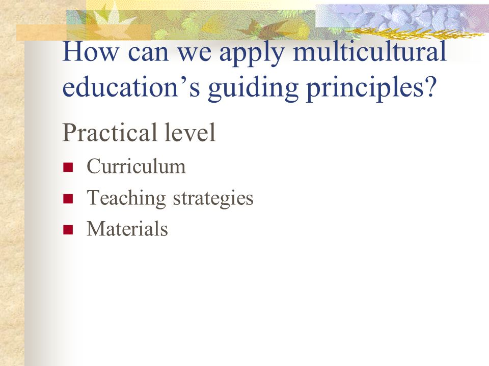 How can we apply multicultural education's guiding principles