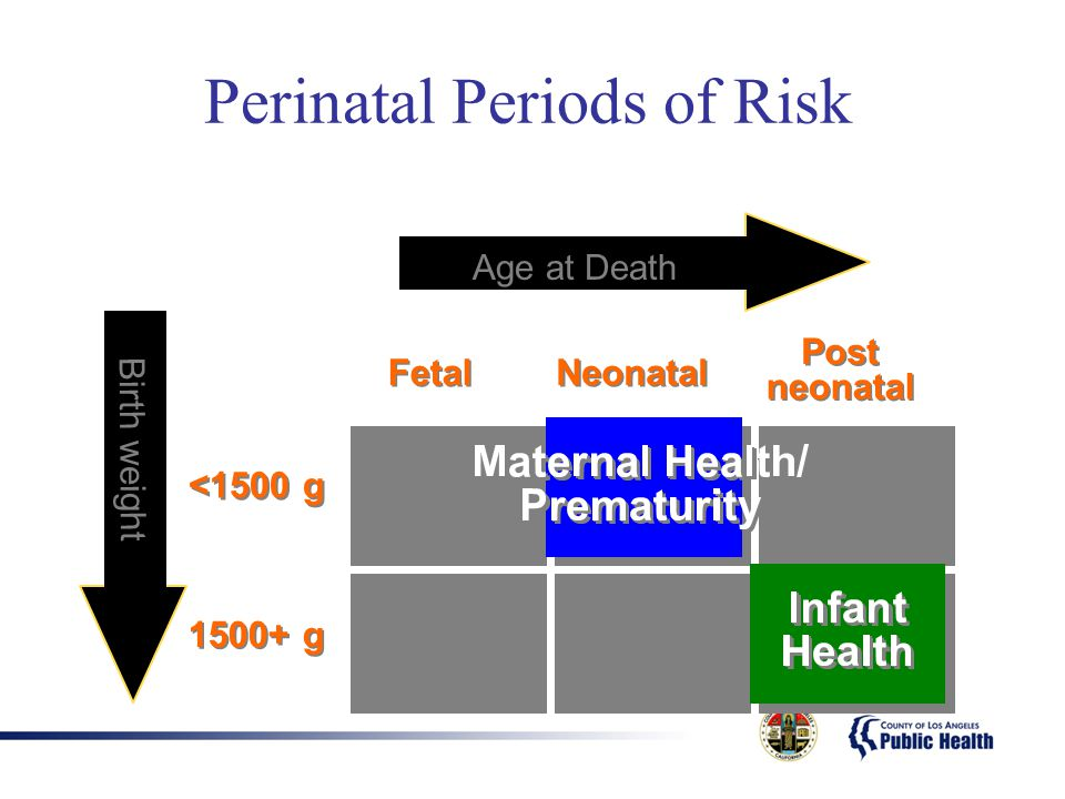 Perinatal Periods of Risk