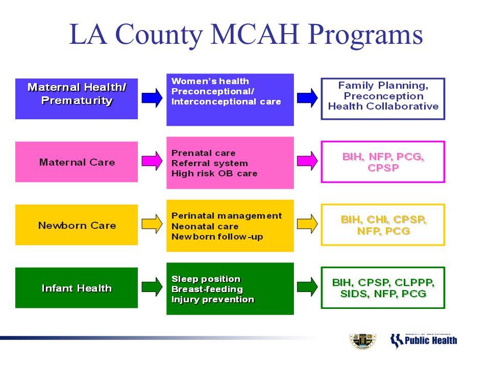 LA County MCAH Programs